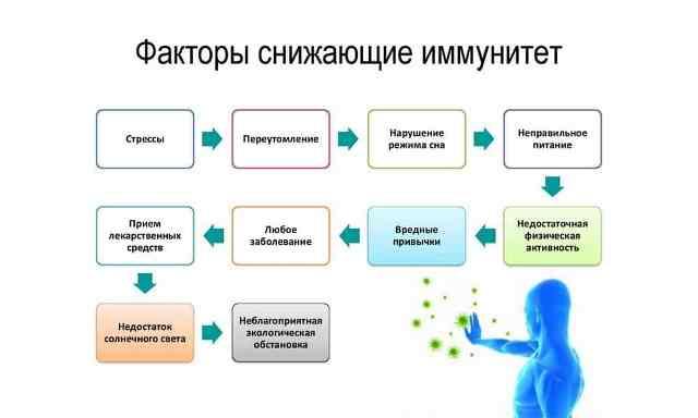 От чего снижается иммунитет