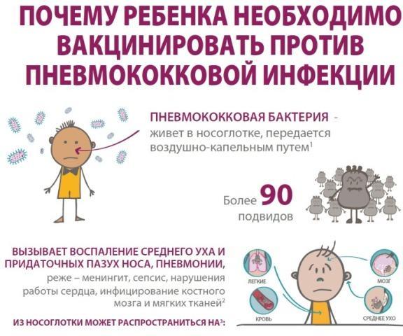 Нужно ли делать прививки ребенку Реакция на пневмококковую прививку