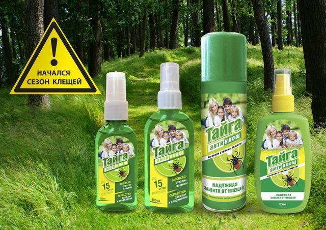 Как защитить себя от клещей на природе в лесу