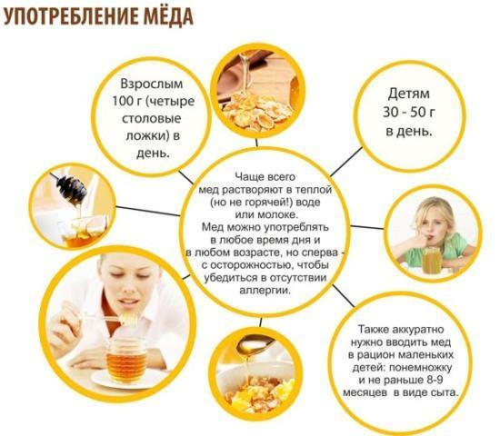 Сколько можно меда ребенку в сутки