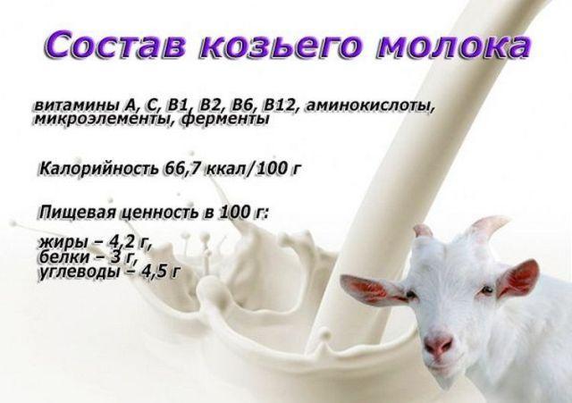 Козье молоко: польза и вред для ребенка
