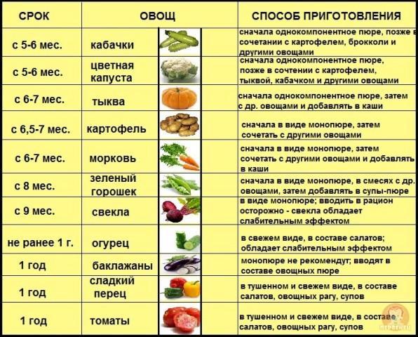 схема введения овощного прикорма