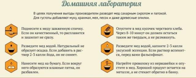 Мед для детей: полезные свойства и противопоказания
