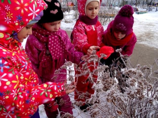 прогулки зимой в подготовительной группе картотека с целями