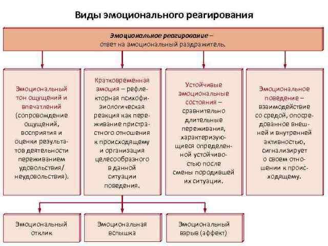 Структура эмоциональных реакций дошкольника