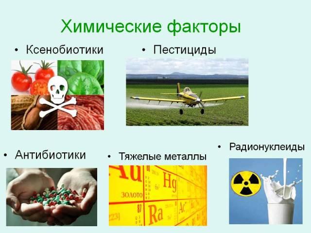 Химические и биологические факторы опасности