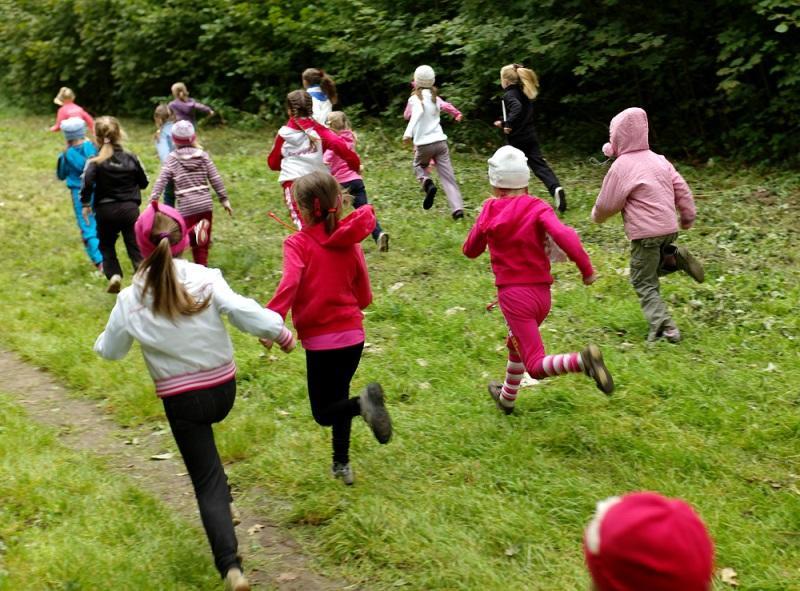 Воспитание сознательного отношения к здоровому образу жизни у старших дошкольников