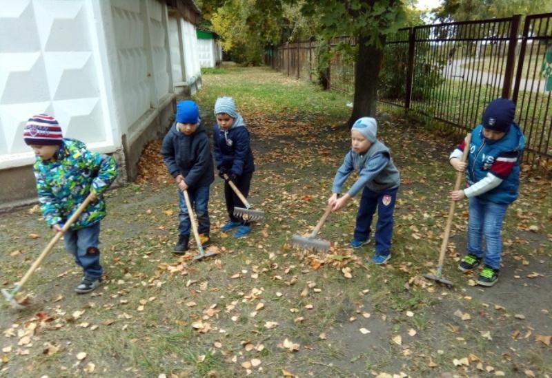Трудовая деятельность детей на участке