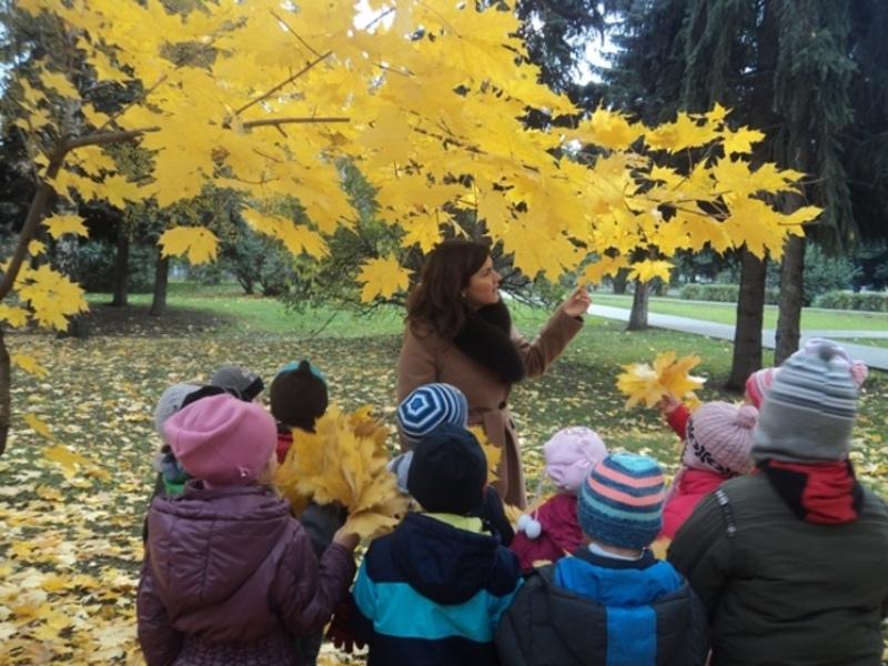 Правила безопасной прогулки в детском саду