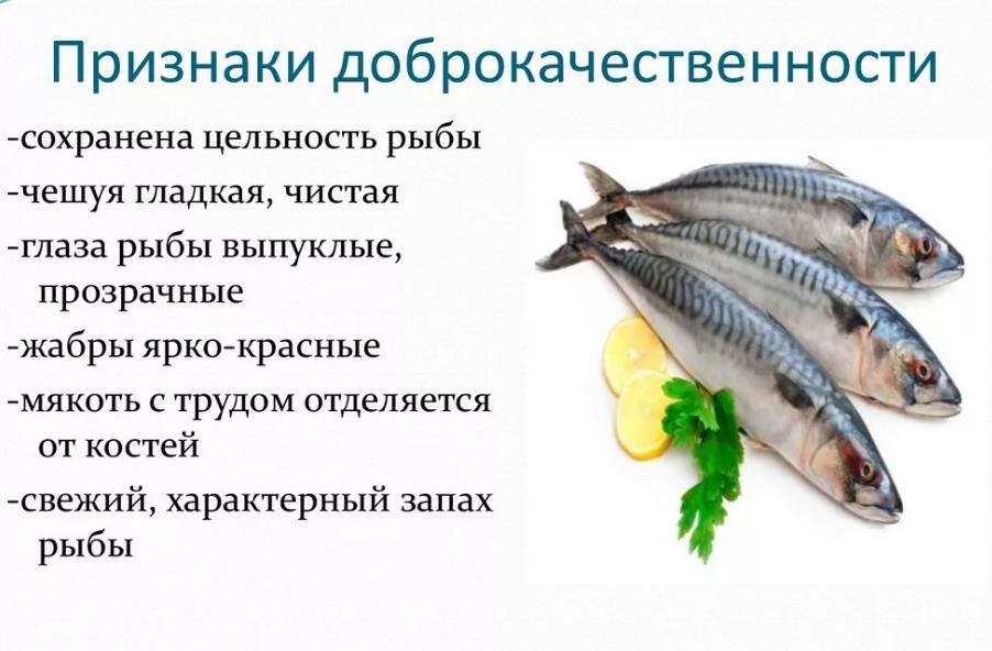 как выбрать свежую рыбу